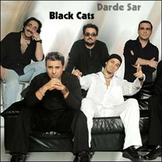 Black Cats Popfather